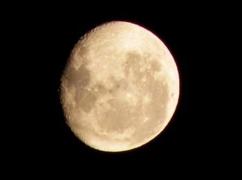 思わずキスしたくなる満月の夜